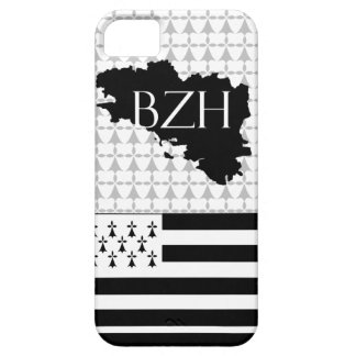 hull barely there for iPhone 5 breizh iPhone 5 Cases