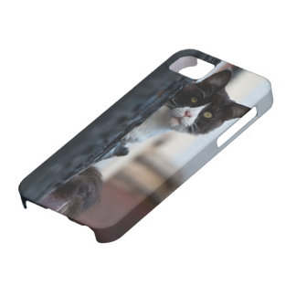 Hull iPhone 5/5S with black cat iPhone 5 Case