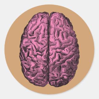 Human Anatomy Brain Classic Round Sticker