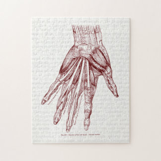 Human Anatomy Hand Muscles Red Jigsaw Puzzle