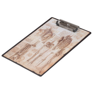 Human Anatomy Skeletons by Leonardo da Vinci Clipboard