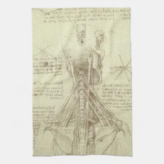 Human Anatomy Spinal Column by Leonardo da Vinci Tea Towel