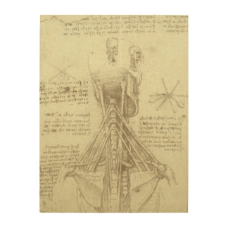 Human Anatomy Spinal Column by Leonardo da Vinci Wood Canvas