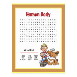 Human Body Postcard