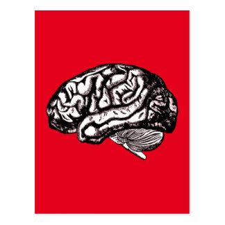 human brain postcard