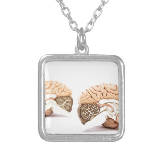 Human brains model isolated on white background silver plated necklace