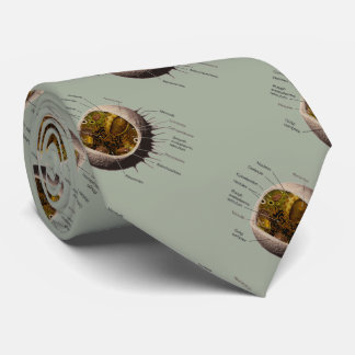 Human Cell Tie