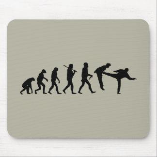 Human Evolution Mouse Pad