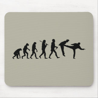 Human Evolution Mousepads