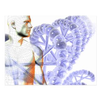 Human Genome Postcard
