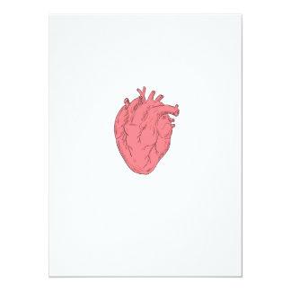 Human Heart Anatomy Drawing Card
