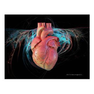 Human heart, computer artwork. postcard