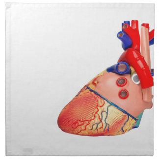 Human heart model on white background napkin