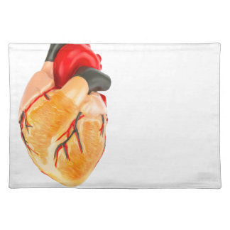 Human heart model on white background placemat