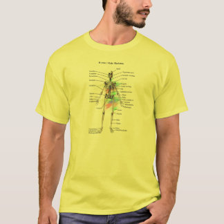 Human Male Skeleton t-shirt