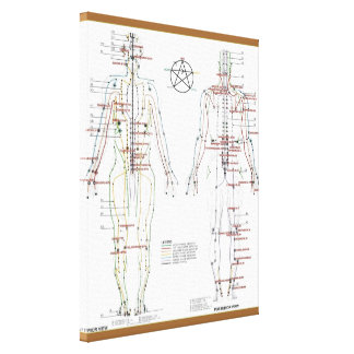 Human Meridians & Pressure Pt Chart wrapped Canvas Stretched Canvas Print