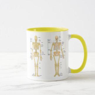Human Skeleton labeled anatomy chart Mug