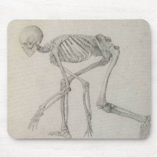 Human Skeleton: Lateral view in Crouching Posture, Mouse Pad