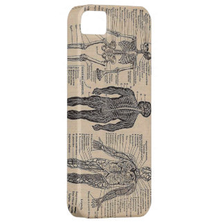Human Skeleton Medical Diagram iPhone 5 Case