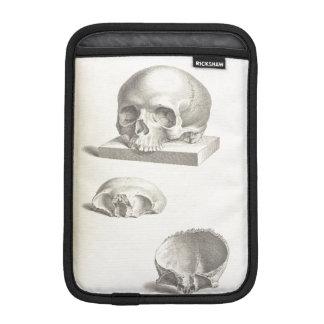 Human Skull iPad Mini Sleeves