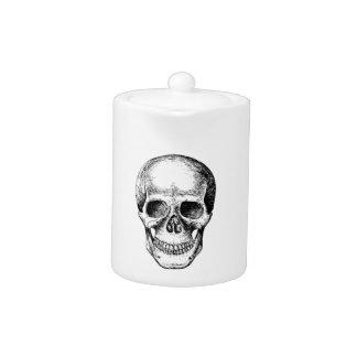 Human Skull White Face
