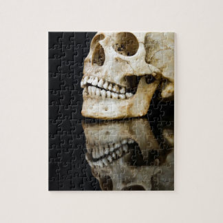 Human skull with mirror image isolated on black jigsaw puzzle