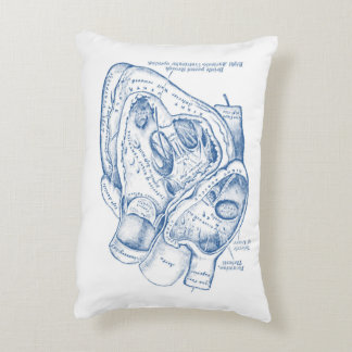 Human Vintage Anatomy Heart blue and white Decorative Cushion