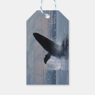 humback whale breaching gift tags