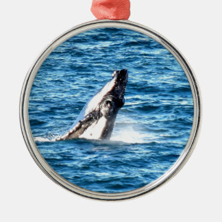 HUMBACK WHALE QUEENSLAND AUSTRALIA METAL ORNAMENT