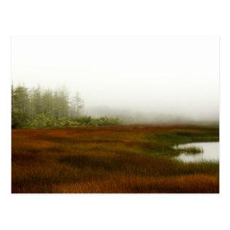 Humboldt Lagoon Postcard