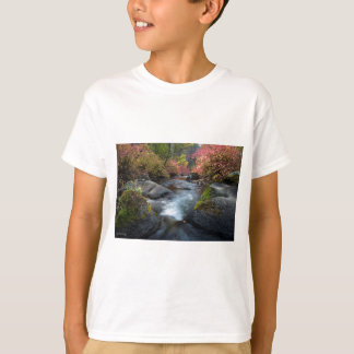 Humbug Spires Wilderness Montana T-Shirt