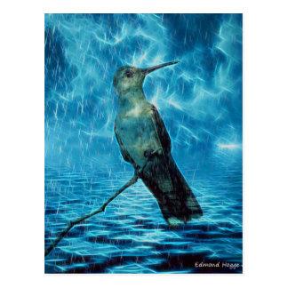 Hummer and the Hurricane Postcard