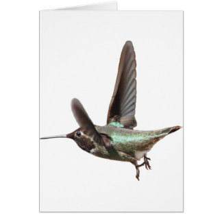 Hummer Galore Card