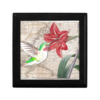 Hummer Map ammaryllis II Small Square Gift Box