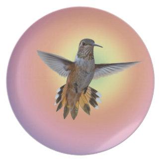 HUMMIMNGBIRD PLATE