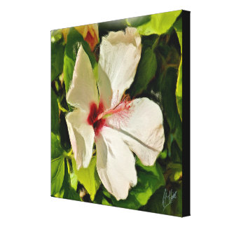 HUMMING BIRD CANDY CANVAS PRINT