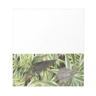 humming_bird notepad