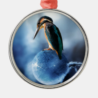 Humming Bird on Frozen Soap Bubble Macro Shot Metal Ornament