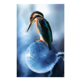 Humming Bird on Frozen Soap Bubble Macro Shot Stationery
