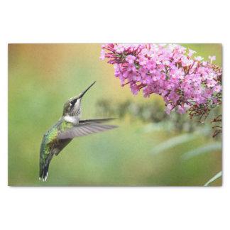 Hummingbird 5053 tissue paper
