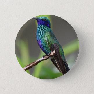 hummingbird 6 cm round badge