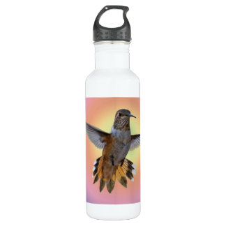 HUMMINGBIRD 710 ML WATER BOTTLE