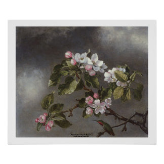 Hummingbird and Apple Blossoms Martin J. Heade Poster