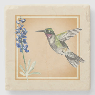 Hummingbird and Bluebonnet on Neutral Background Stone Coaster