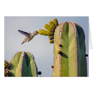 Hummingbird and Cactus Notecard