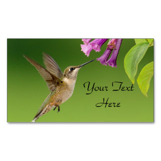 Hummingbird And Flower Magnetic Business Cards