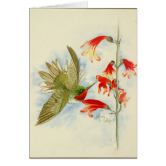 Hummingbird and Red Blossoms Card