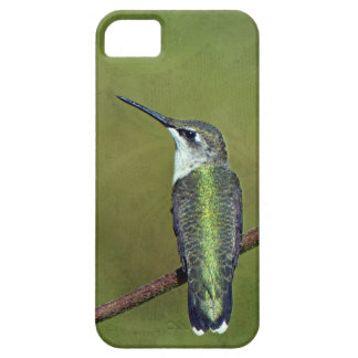 Hummingbird and Zinnia iPhone 5 Case