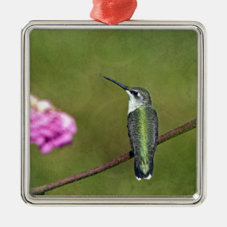 Hummingbird and Zinnia Silver-Colored Square Decoration