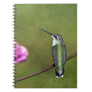 Hummingbird and Zinnia Spiral Note Book